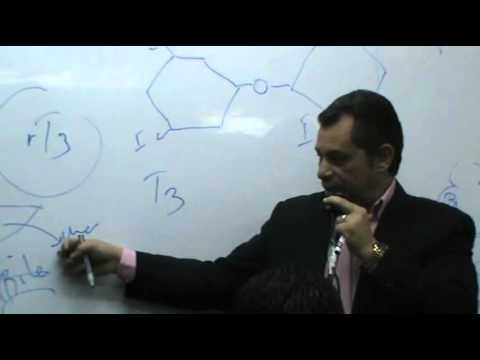 Dr Ahmed Abd El Rahman - Hormones 3 - Thyroid Gland - Part 1