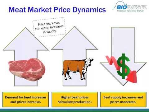 Alan Weber - Fueling Livestock Profitability - Economics of Biofuels