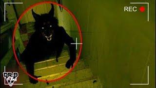 Gerçekten Kameraya Yakalanmış 5 Gizemli Yaratık