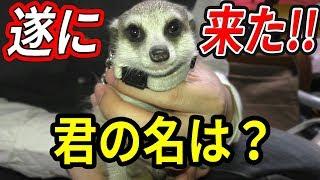 お迎え渋谷くん(23)