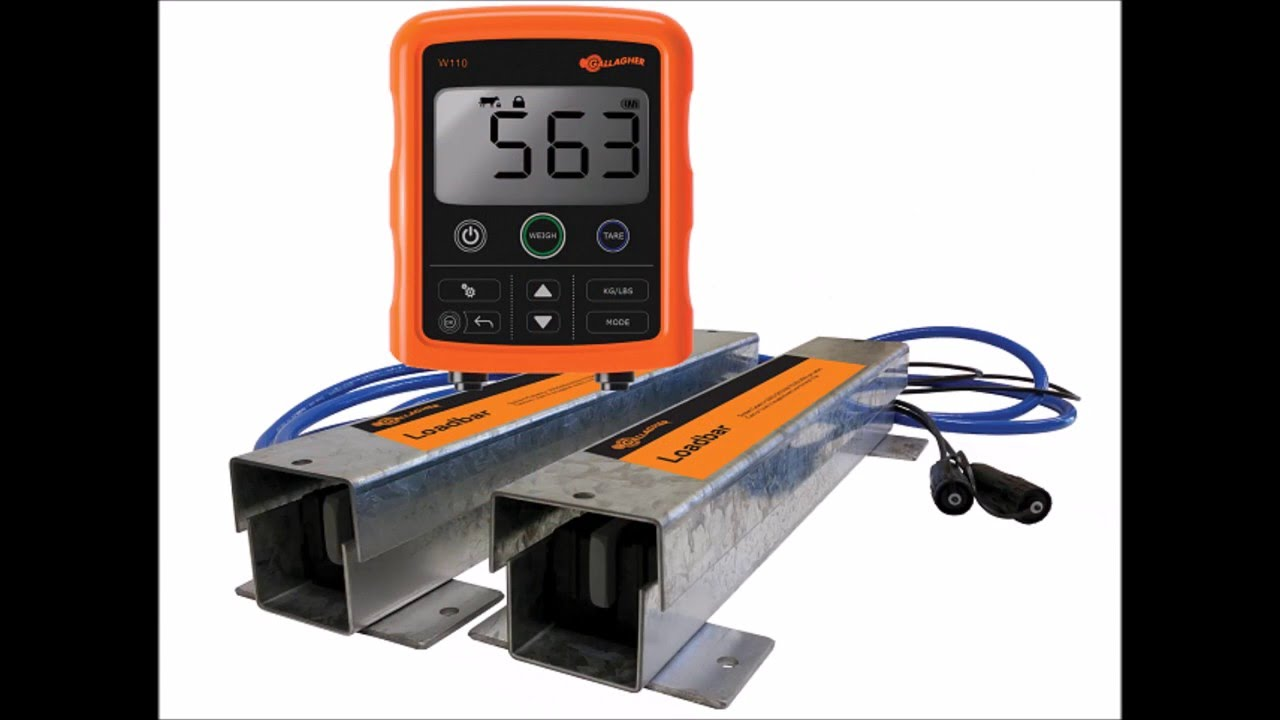 Gallagher W110 Cattle and Livestock Scale Weighing System from www.valleyfarmsupply.com