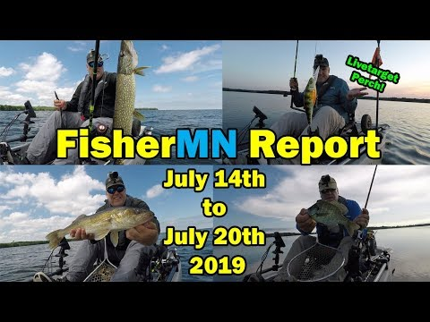 FisherMN July 14 To July 20th  Fishing Report 2019