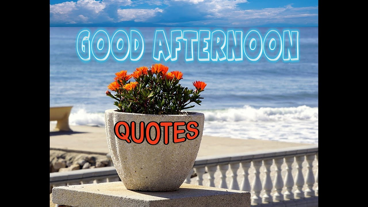 Good Afternoon Quotes   YouTube