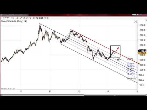 Real Issues Driving Fundamentals | Gold Forecast 03.14.2014