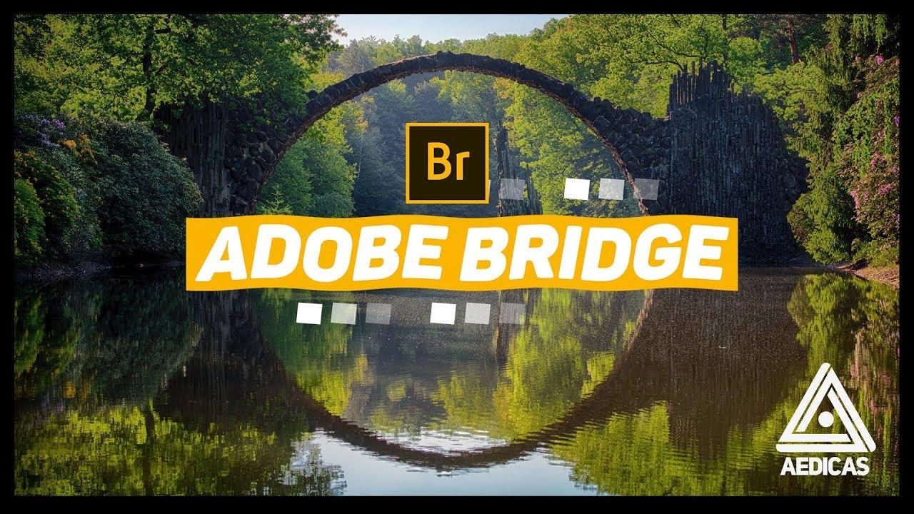 03 MOTIVOS para usar o ADOBE BRIDGE | Olha a Dica #016
