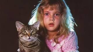 🎡 Фильмы о кошках ХХ века (топ 10) Movies about cats of the twentieth century (top 10)