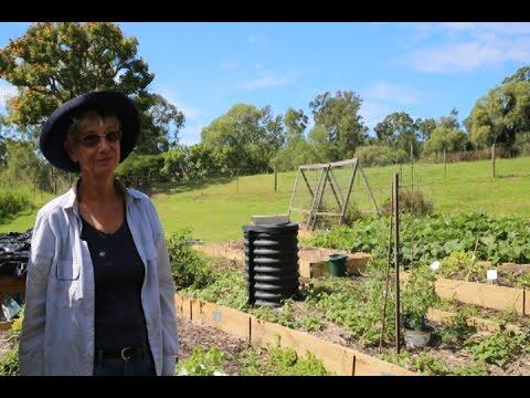 Hills Organic Garden - The Goodness Inc