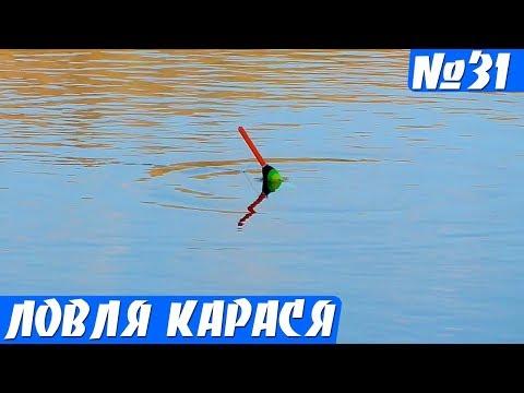Рыбалка на карася на малой реке. Карась на поплавок в жару