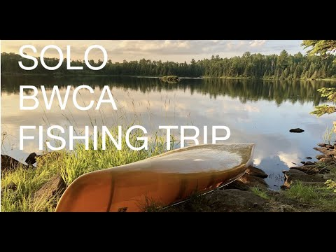 4 Day Solo BWCA Fishing Trip - Moose, Wildlife And More