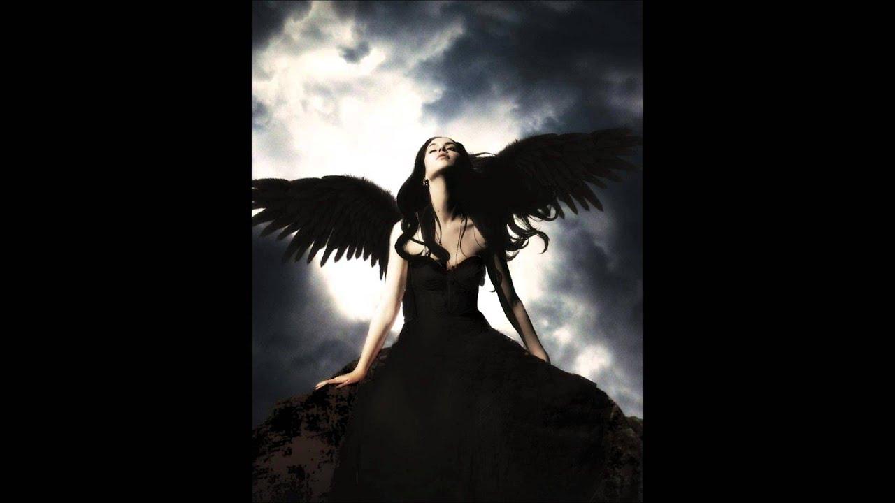 Fall Out Boy Lyrics Wallpaper Fallen Angel Molly Svrcina Bmi Youtube