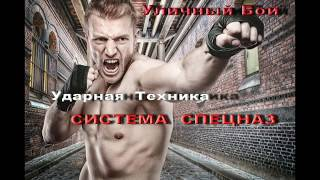 Ударная Техника Shock Technique Vadim Starov Russian Hand-to-Hand Fight Systema Spetsnaz