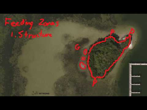 How To Find Inshore Feeding Zones Using Online Maps (Real-Life Example)