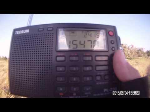 15470 кГц VATICAN RADIO