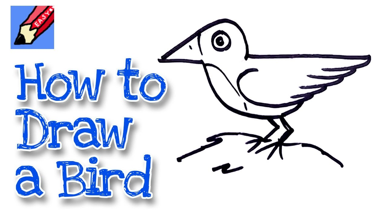 How to draw a bird real easy - for kids and beginners ...