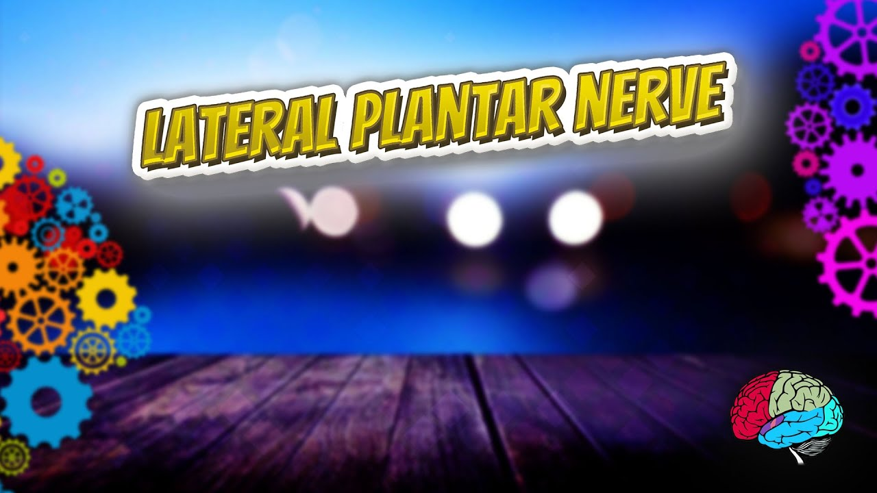 Lateral Plantar Nerve Know It All Youtube