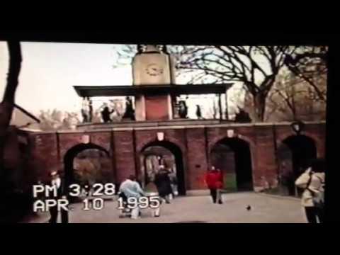Prince In Central Park 1995