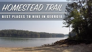 HOMESTEAD TRAIL - Ręd Top Mountain - Best Places To Hike In Georgia