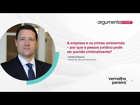 A empresa e os crimes ambientais | Argumento Pocket 11