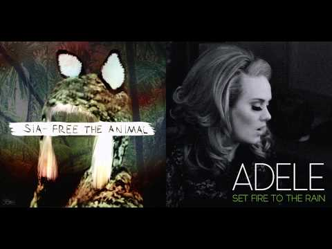 Sia vs Adele  Free The Fire Mashup
