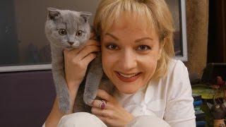 Человек и кошка  - Татьяна Буланова (2016)