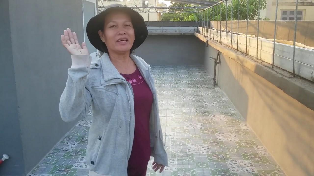 Khoe Vườn rau sân thượng khoahien, đã lót gạch sàn làm mới 21/03/2019 | Khoa Hien 169