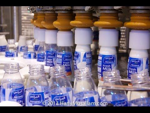 Almarai Dairy factory