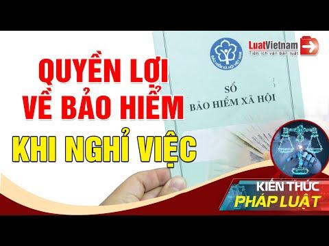 3 Việc Về Bảo Hiểm Cần Làm Ngay Khi Nghỉ Việc   LuatVietnam