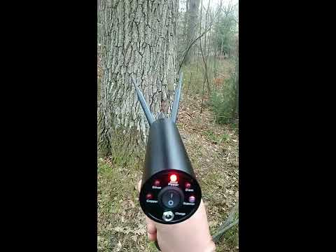 AKS metal detector in work, treasure found in the tree.Металодетектор АКС в работе, поиск сокровищ в