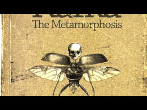 Metamorphosis 1