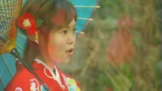 水木ケイ - 海椿
