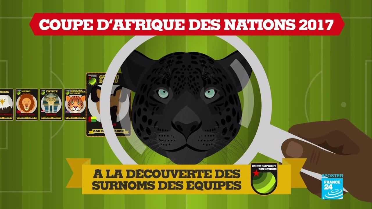 Can 2017 la d couverte des surnoms des quipes de la - Coupe d afrique des nation ...