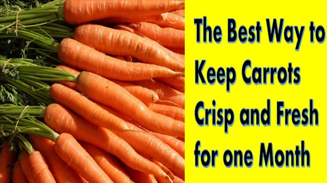 How to Store Carrots