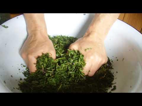 Как сделать ферментированный чай из иван чая в домашних условиях