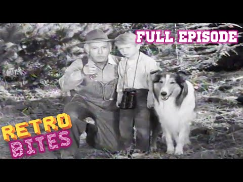 Lassie | Black Woods | Full Episodes
