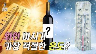 와인이 맛있어지는 온도와 그 이유 [와인꿀팁 #28]