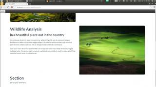 OpenERP 8 website module