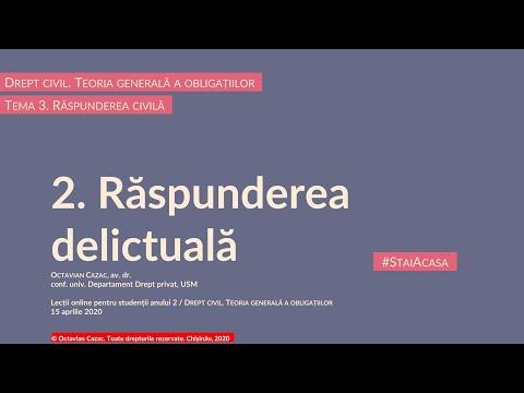 Raspunderea delictuala — introducere (MD)
