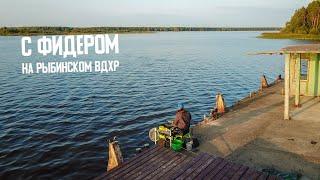 Рыбалка на фидер на Рыбинском вдхр. Осень 2019. Ловля плотвы и подлещика. Супер сложная рыбалка!