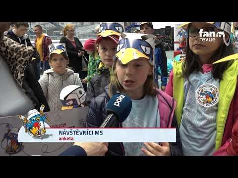 Mistrovství světa para hokej 2019 / FAN TV / DEN 4