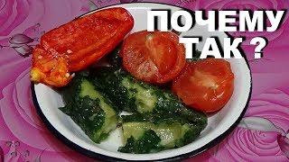 Стоит ли покупать огурцы и томаты зимой в супермаркетах  Витамины или отрава ?