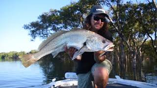Finding jewfish with Hook2
