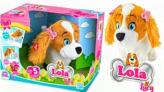 Интерактивная игрушка  Собака Лола. Обзор игрушек