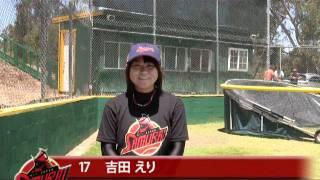 日本人単独チームがアマチュア野球最高峰リーグに挑戦!! サムライAL...