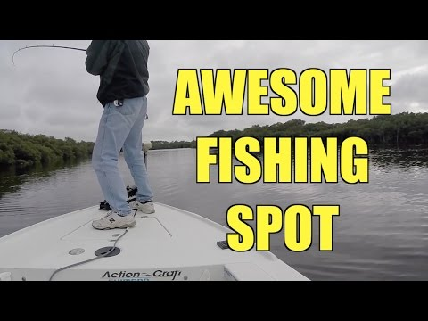 Fishing Florida's Loxahatchee River