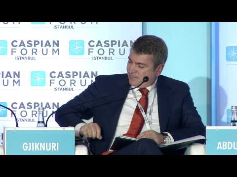 Caspian Forum 2013 Istanbul, December 5th, Panel 2: Southern Corridor: Main Conduit for...05.12.2013