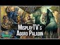 MisplayTV's Aggro Paladin - Hearthstone Decks