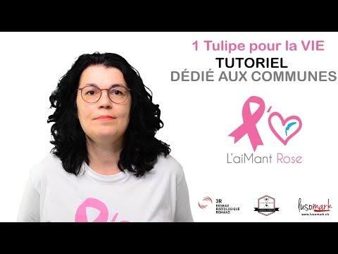 tutoriel-communes-1-tulipe-pour-la-vie-2019-&-2020-français