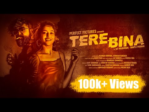 Tere Bina || PERFECT PICTURES || FT. JAY WADHWANI || 2019