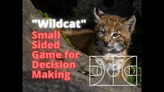 Wildcat SSG (Find, Use, Create)