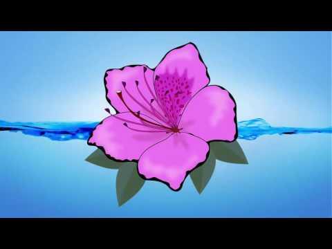 Flower Clipart Images